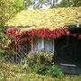 Herbst mit bunten Farben