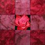 「薔薇圖 ... ピンクの余白」/4号S(33.3×33.3cm)/油彩画、虹彩箔(レッド、ローズ)