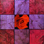 「薔薇圖 ... レッドの余白」/4号S(33.3×33.3cm)/油彩画、虹彩箔(レッド、ピンク)
