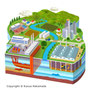 エコ、エコロジー、自然