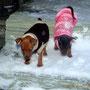 Amina & Akilah Ui, da ist aber viel Schnee