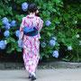 紫陽花の咲くころ (鎌倉市)