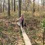 Wackelige Holzbrücken führen über Wasserlöcher