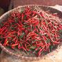 Die vietnamesische Küche ist, im Gegensatz zu Thailand, nicht wirklich scharf, auch die Schoten sind eher mäßig spicy