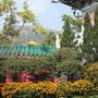 Blumenpracht im Kloster