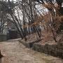 Kaiserlicher Garten, UNESCO World Heritage, Seoul