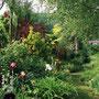 Le Jardin de Dan : massif de vivaces dont iris côté ouest au printemps