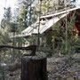 verlassene Wohnstätte