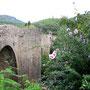 © Traudi  -  Brücke in Sant Llorené de la Muga, Katalonien