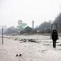 Scharbeutz - Strandlandschaft mit Frau und Hund, nicht zueinander gehörend