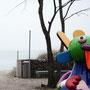 Scharbeutz - Strandlandschaft mit Kunst