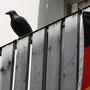 Paderborn - Du bist Deutschland