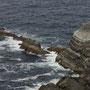 Die Skellig Rocks - unser morgendlicher Spazierweg -