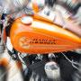 fotoCard Harley # 95027