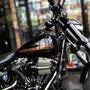 fotoCard Harley # 95017