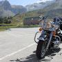 fotoCard Harley # 95000