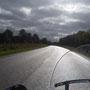 fotoCard Harley # 95013