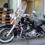 fotoCard Harley # 95003