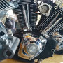 Tischset Harley | # 95053