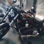 fotoCard Harley # 95015