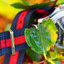 Band: Nato XT »Red Sailor« | Uhr: Breitling Colt