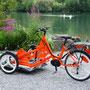 HCP Swiss, Sevelen - eTriBike Noemi für Rollstuhl
