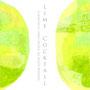 ライムカクテル / Lime Cocktail  (~イメージキーワード~  爽やかな空気に交じる心地よい苦味。 静かに弾ける淡い記憶。 田舎の田園風景。馳せる思い。)