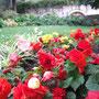 花の都〜パリの散歩道〜♪