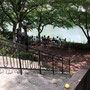 気持ちのいい公園です