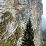 Rocce sedimentarie - naturale