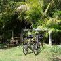 Auf der Insel fährt jeder mit dem Velo, Autos gibt es kaum