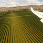 Landung bei Blenheim im schönen Weingebiet Marlborough