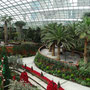 "Im neuen ""Gardens by the Bay"""