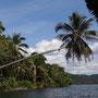 """Anfahrt auf dem Fluss zu unserer """"Floating Lodge"""" in Kambodscha"""