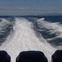 Überfahrt mit dem Speedboad nach Koh Kood