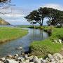 Sattes grün, Flüsse und Küsten
