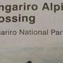 Los gehts auf die Tongariro Crossing!