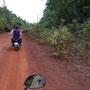 Los gehts auf eine Tour in den Regenwald