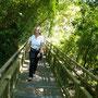 ausgedehntes Stegnetz in Iguazu