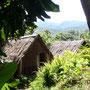 Wohnhaus versteckt im Dschungel auf Aneityum
