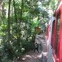 Zug auf den Corcovado (Christusstatue)