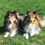 Iven und Good Luck of Summergarden (10 und 1 Jahr alt)