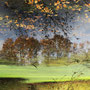 """René HOCH                   """"Reflets""""   Photo autorisation exceptionnelle)"""