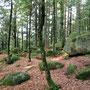 Die Günserfelsen erinnern mich (ein kleines bißchen) an das Felsenmeer im Odenwald