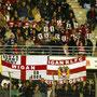 Février 2006 - Dragons Catalans Vs Wigan © Tous droits réservés Neil DAVIS