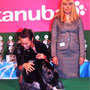 02.09.2011 Euro Dog Show Leeuwarden (NL): Junior Class - EXC - Fujimoto Masanori (MX) - Brace Winner with Marveil Kiwi and BIS winner