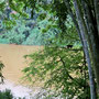 Mahawewi Ganga River Kandy Botanic Garden Peradeniya Sri Lanka