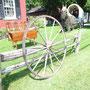 Très grande roue  no. 254