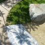 Schattenspiel am Boden