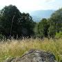 Trockenrasen und Fels als typisches Landschaftselement